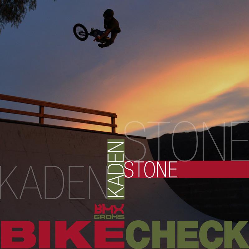 Kaden Dubby Stone 16 inch BMX Bike Check - Total BMX