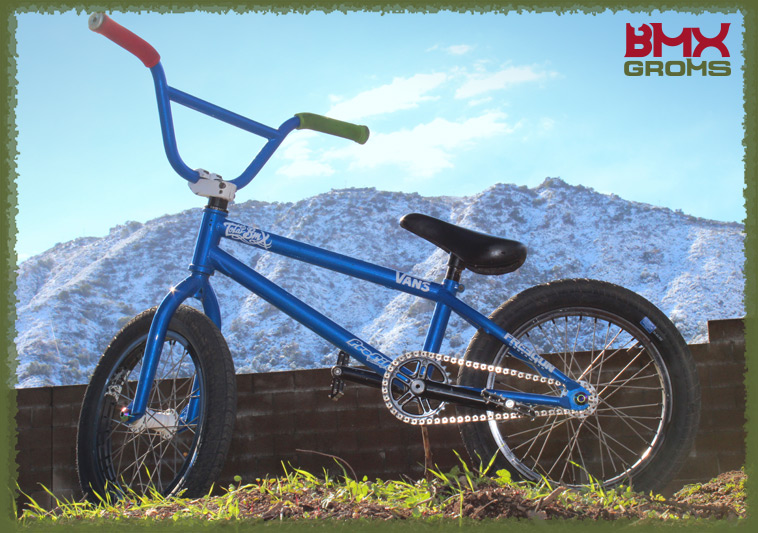 "Kaden Dubby Stone 16"" Total BMX Bike Check"