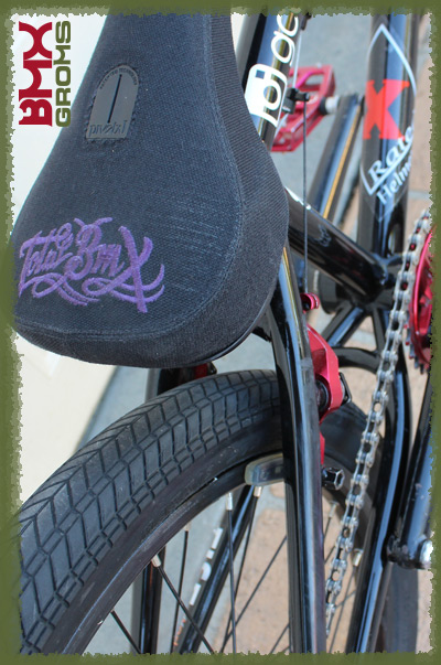 "Rylan Kindness Colony Sweet Tooth 20"" BMX Bike Check BMX Groms Seat"