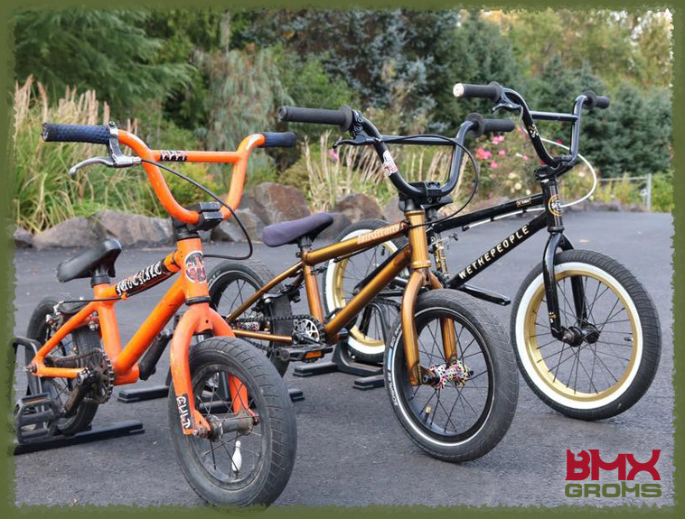 "Caiden Cernius, 12"" 14"" and 16"" BMX Bikes"