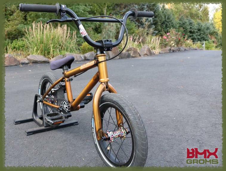 """Caiden Cernius 14"""" BMX"""